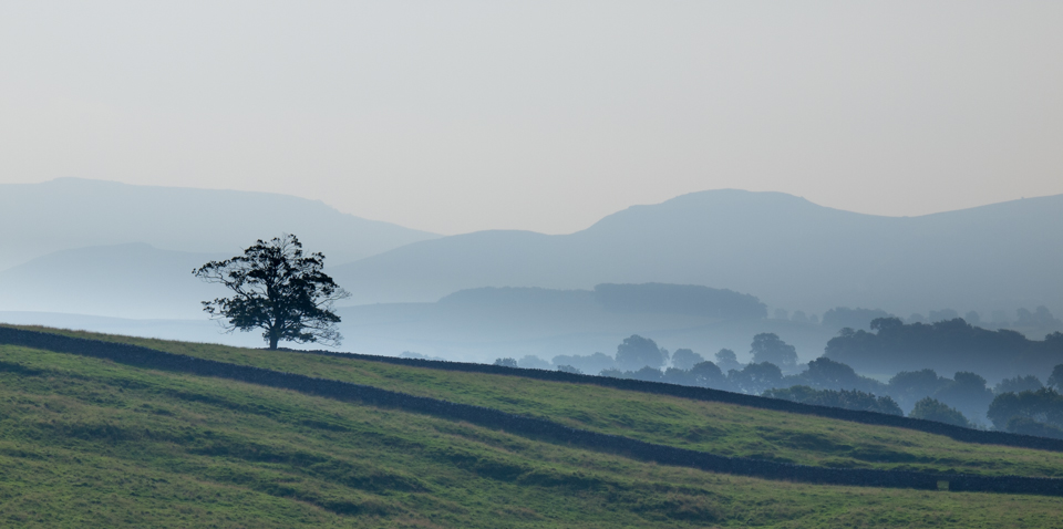 Barden Moor skyline from Warber Hill