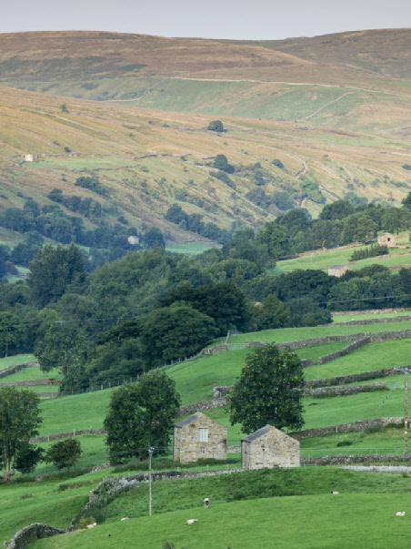 Looking up the Swale valley from Gunnerside