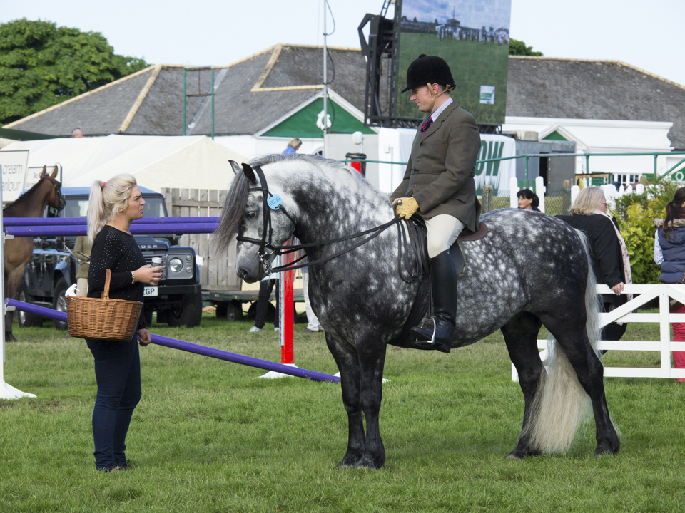 Great Yorkshire Show, 2015