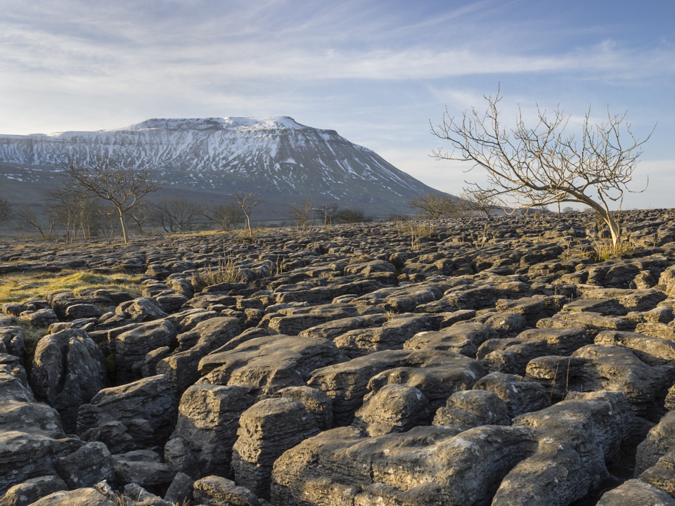 Ingleborough and the limestone pavement at Southerscales