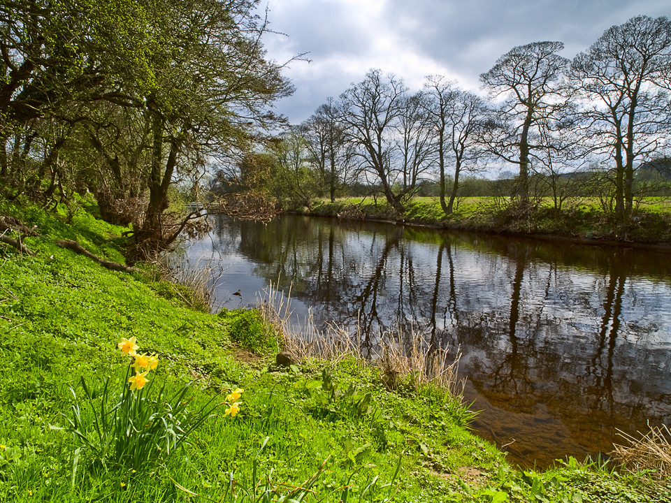 River Wharfe at Netherby, Wharfedale, Yorkshire